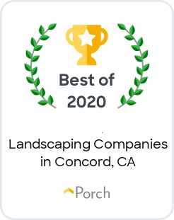 Best Landscaping Companies in Concord, CA