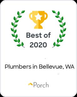 Best Plumbers in Bellevue, WA
