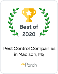 Best Pest Control Companies in Madison, MS